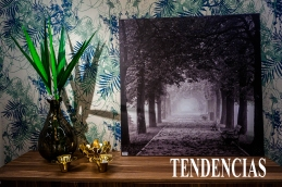 TENDENCIAS 1